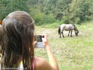 Meisje maakt met haar mobiele telefoon een foto maken van een wild paard