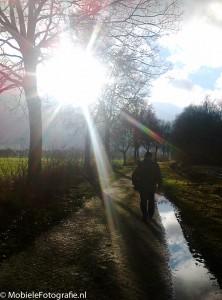 Tegenlicht in Drenthe