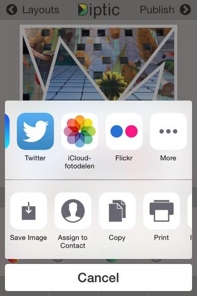 Diptic - delen van de collage - share image (IOS)