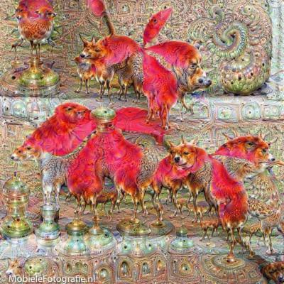 De herfstblaadjes-foto na een DeepDream bewerking. Instellingen: Iterations 20, Layers 50, Octave 12, Scale 1.1.