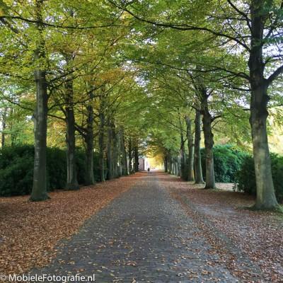 De originele foto van Landgoed Elswout bij Haarlem.
