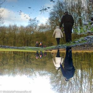 Omgedraaide foto van de spiegeling in een regenplas in Drenthe. [Nokia C2]