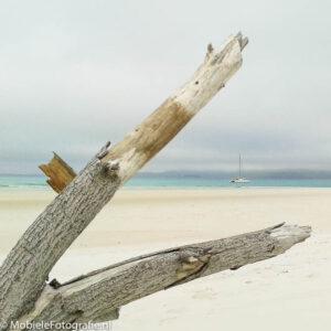 Een omlijsting door een boomtak op deze foto leidt je blik naar het kleine bootje op zee. [Android Galaxy Trend]