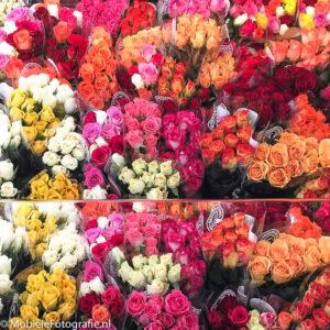foto van Bossen bloemen, gespiegeld. [iPhone 6]