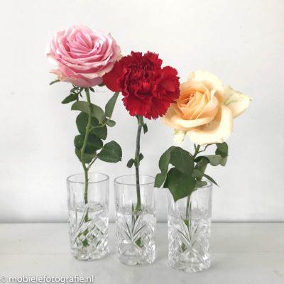 Regel van de oneven aantallen: mobiele foto van drie bloemen in een vaas. [iPhone 7]
