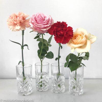 Regel van de oneven aantallen: mobiele foto van vier bloemen. [iPhone 7]